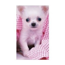 Chihuahua: is the smalle Decal