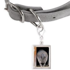 Rhino going inside from doo Small Portrait Pet Tag