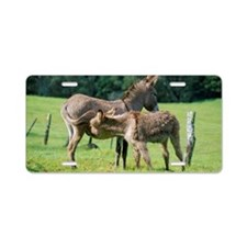 Mother and baby donkey Aluminum License Plate