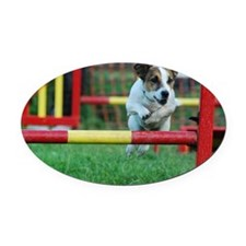 Dog Agility Jack Russell Terrier Oval Car Magnet