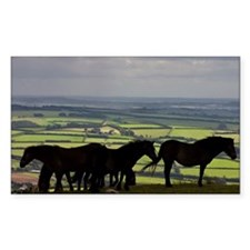 Exmoor National Park where wil Decal