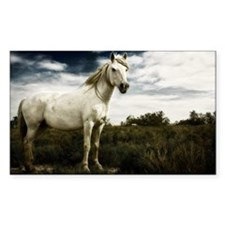 White horse Decal