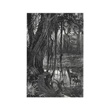 Florida Everglades, 1885 Rectangle Magnet