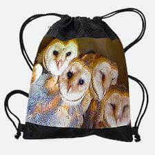 dec.png Drawstring Bag