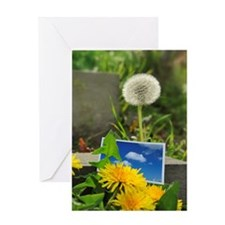 Photo of blue sky are placed Greeting Card