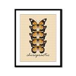 Butterflies Framed Panel Print