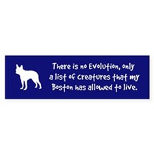 Shocking BOSTON Terrier Evolution Bumper Sticker
