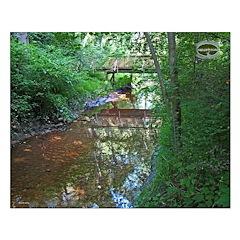 Chesapeake Arboretum 09 06 calendar 16x20 print