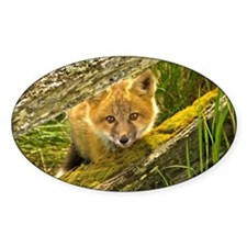 Red Fox Decal