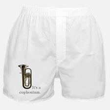 It's a Euphonium Boxer Shorts