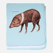 Collared Peccary Animal baby blanket