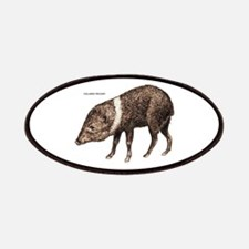 Collared Peccary Animal Patches