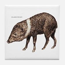 Collared Peccary Animal Tile Coaster