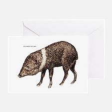Collared Peccary Animal Greeting Card