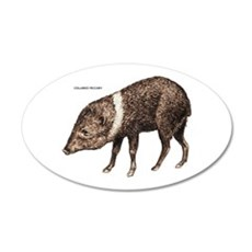 Collared Peccary Animal Wall Decal