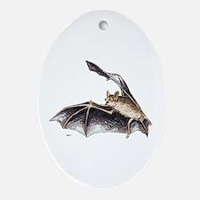 Bat Animal Ornament (Oval)