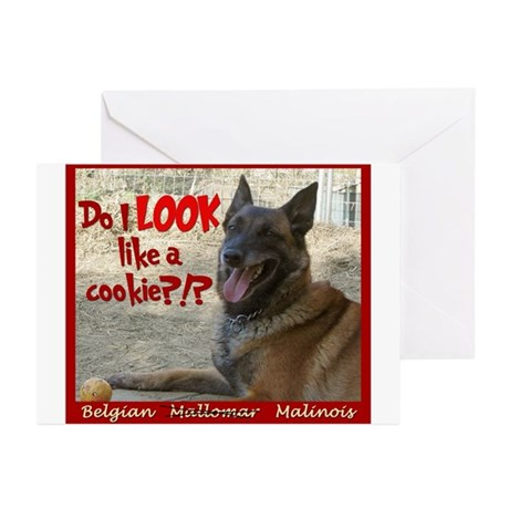 Malinois Mallomar Cookie Greeting Cards (Package o