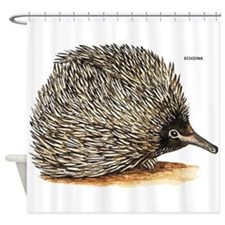 Echidna Spiny Animal Shower Curtain