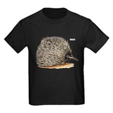 Echidna Spiny Animal T