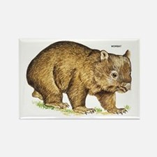 Wombat Animal Rectangle Magnet