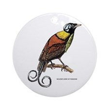 Wilson's Bird of Paradise Ornament (Round)