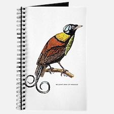 Wilson's Bird of Paradise Journal