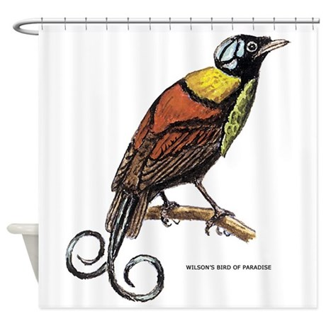 Wilson 39 S Bird Of Paradise Shower Curtain By Animalartwork
