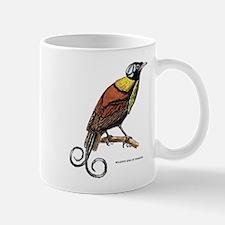 Wilson's Bird of Paradise Mug