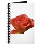 Coral Beauty Rose Journal