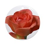 Coral Beauty Rose Ornament (Round)
