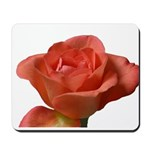 Coral Beauty Rose Mousepad