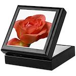 Coral Beauty Rose Keepsake Box
