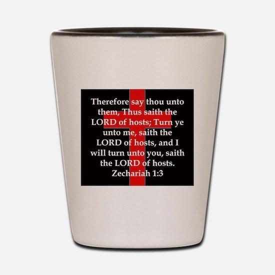 Zechariah 1-3 Shot Glass