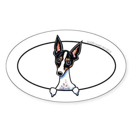 Rat Terrier Peeking Bumper Sticker