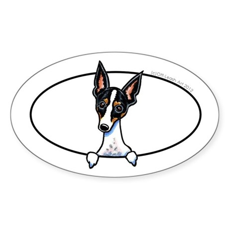 Rat Terrier Peeking Bumper Sticker