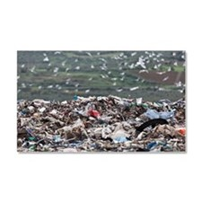 Landfill at garbage collection  Car Magnet 20 x 12