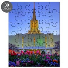 This is a picture of the Jordan River Templ Puzzle