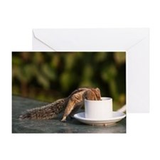Squirrel drinking from coffee cup at Greeting Card