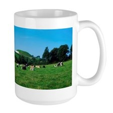 Holstein-Friesian cattle in front of New Mug