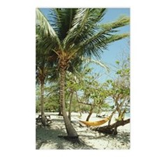 Puerto Rico, Vieques, ham Postcards (Package of 8)