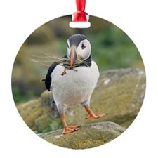 Nesting puffin Round Ornament