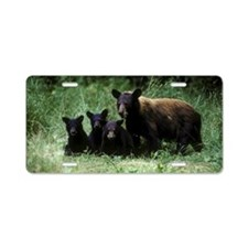 black bear ursus americanus Aluminum License Plate
