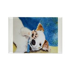 Jack Russell Terrier Junior Rectangle Magnet (100