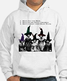 Wicked Witches 101 Hoodie