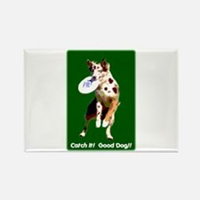 Catch It! Red Merle Rectangle Magnet