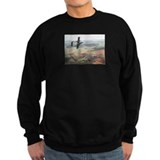 Aircraft bronco Sweatshirt (dark)