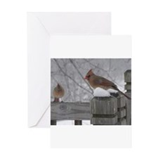 Northern Cardinal Females Greeting Card