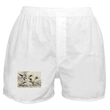 smittyts.com ENGLISH SETTER A Boxer Shorts