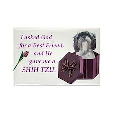 Shih Tzu Rectangle Magnet (10 pack)