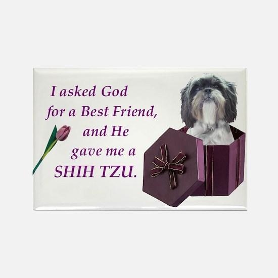 Shih Tzu Rectangle Magnet